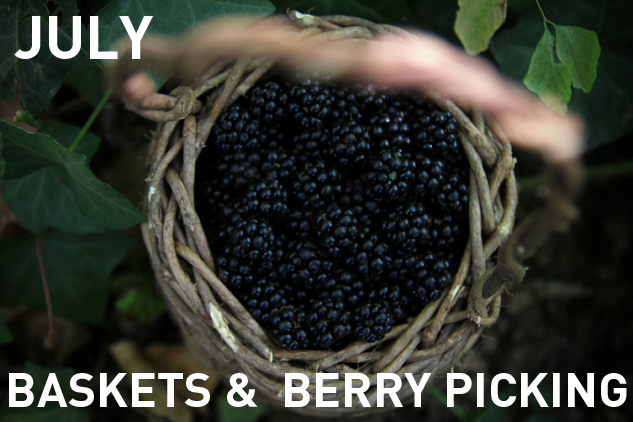 7_Jul_Baskets and berries