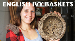 english_ivy_baskets